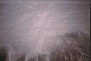 Linien in Nazca
