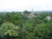 Tikal-Blick vom Tempel V