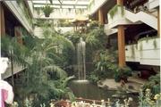 Im White Swan Hotel