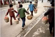 Eiertransport in Shanghai
