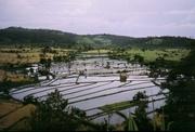 Unterwegs auf Java