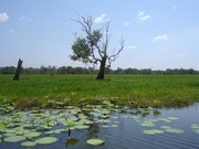 im Kakadu-Nationalpark