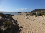auf Isla de Lobos 2