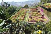im jardim botánico
