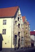 Drei Schwesternhaus in Tallin