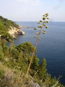 bei Dubrovnik
