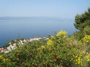 Fahrt nach Dubrovnik