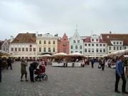 Markt auf dem Rathausplatz