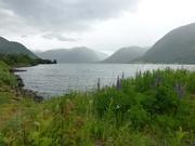 unterwegs im Fjordland