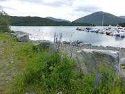 Fahrt durch das Fjordland
