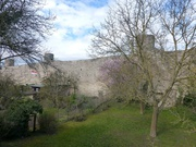 alte Stadtmauer in Heidingsfeld