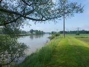 Donau bei Gögglingen