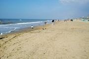 am Zandvoorter Strand